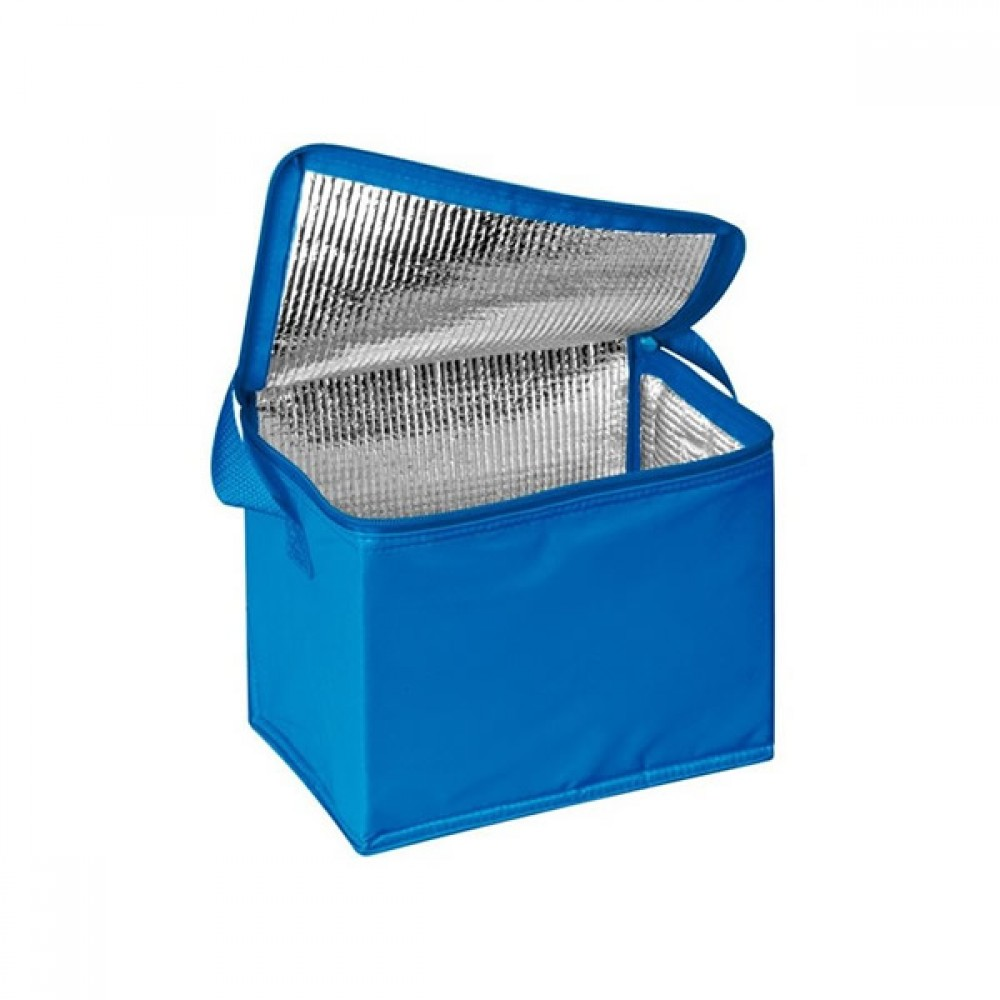 Soğutucu Çanta